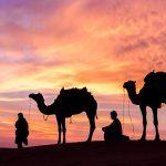 United Arab Emirates | امارات متحده عربی