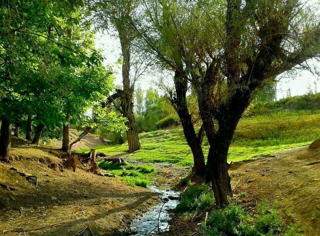 روستای دهبکری بم
