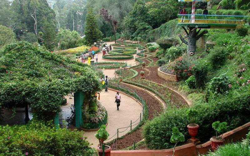 باغ گیاهشناسی چین