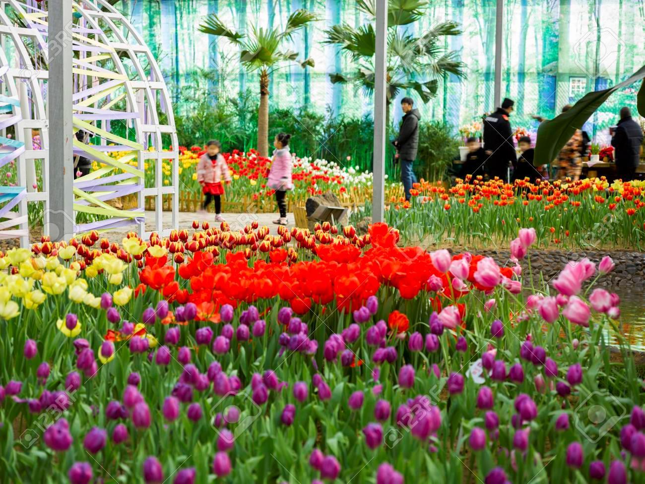 باغ گیاه شناسی چین
