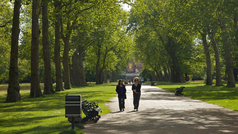 باغ های کنزینگتون لندن