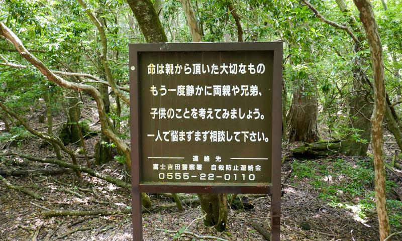 جنگل آئوکیگاهارا