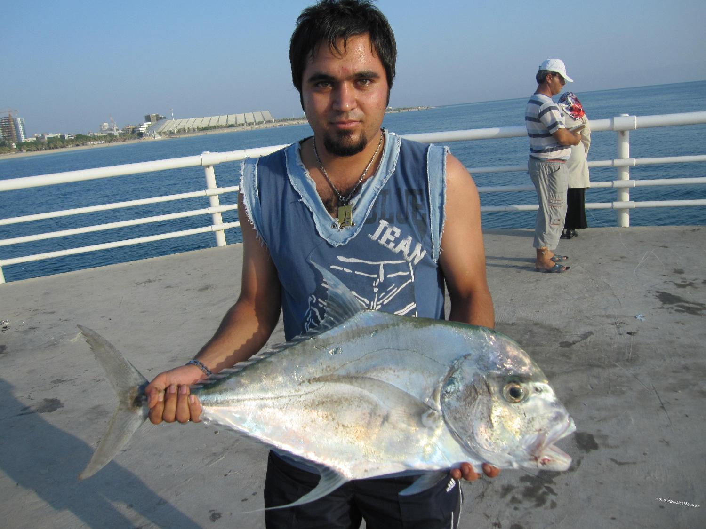 ماهیگیری کیش