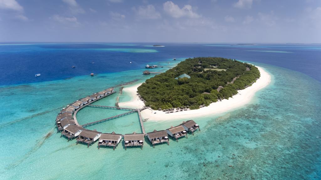هتل ریدی بیچ ریزورت مالدیو