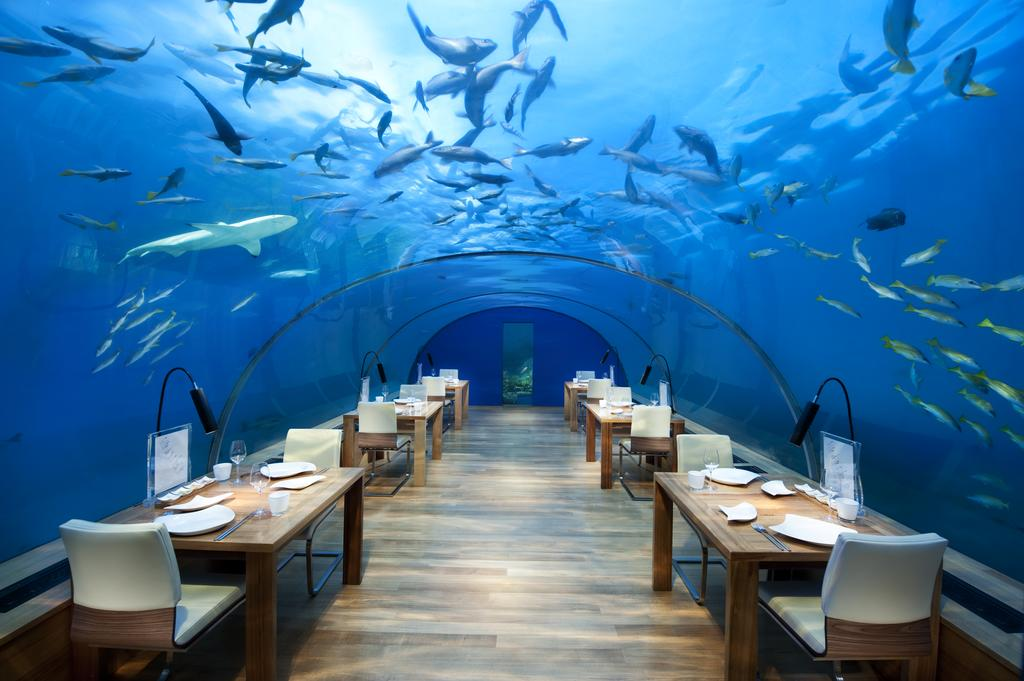 هتل کنراد رانگالی مالدیو
