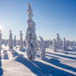 رووانیمی| Rovaniemi