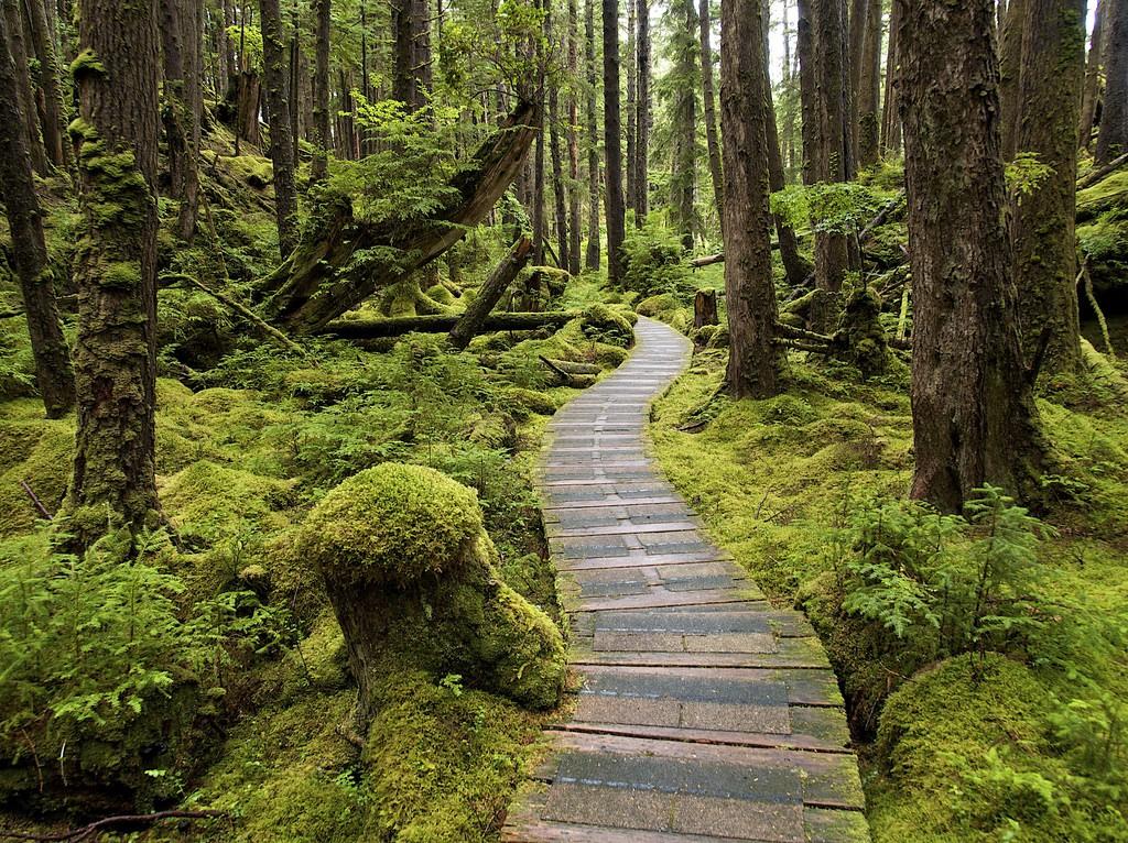 زیباترین جزیره های کانادا