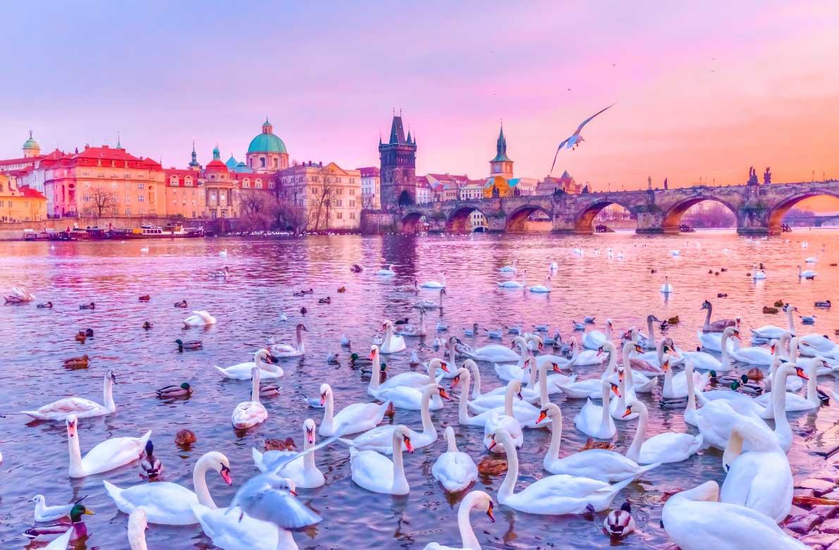نکات حیاتی برای مسافران اروپا