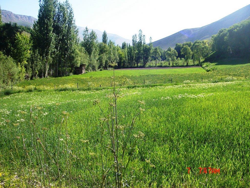روستای لزور تهران