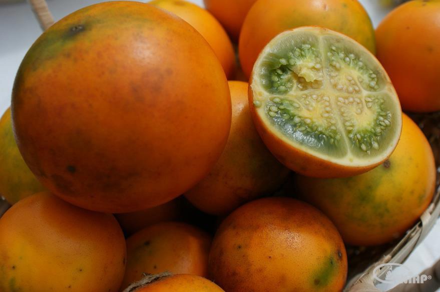 میوه های عجیب و غریب اکوادور
