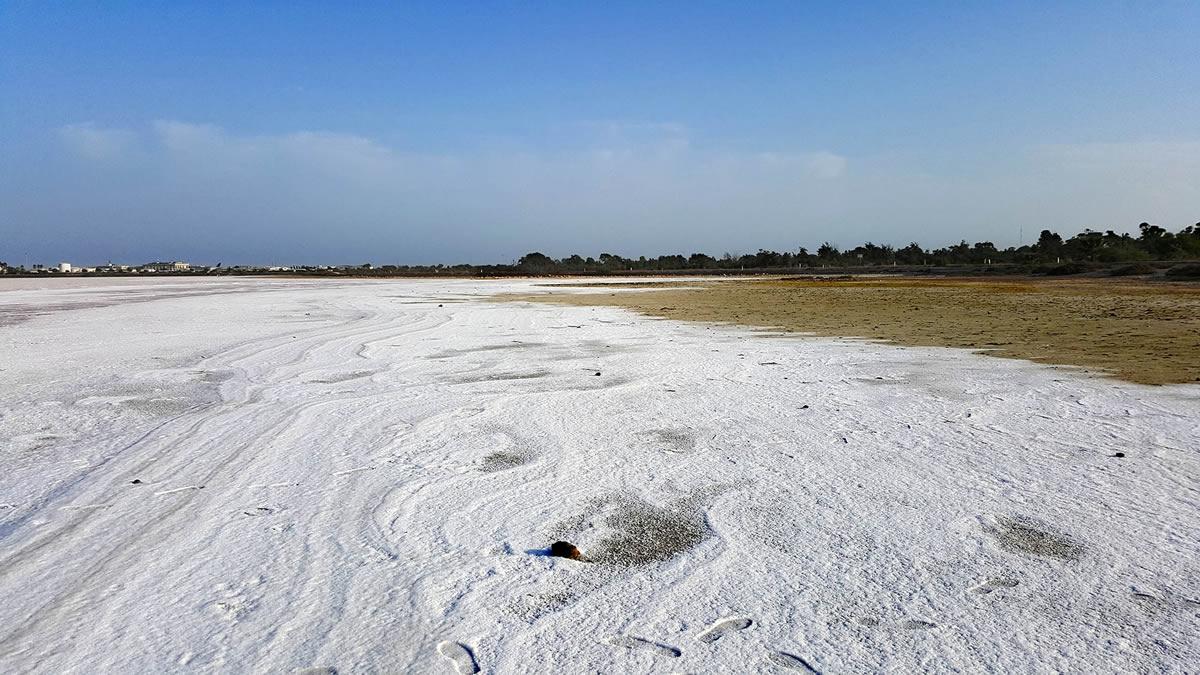 دریاچه نمک لارناکا
