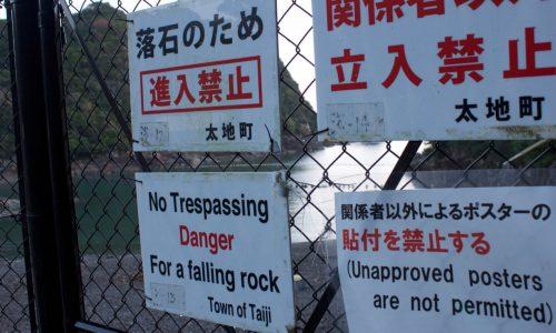 دلفین ها در تایجی ژاپن قتل عام شدند