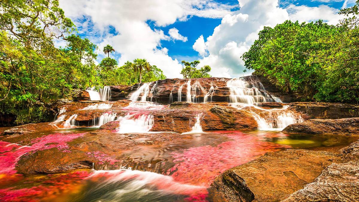 رودخانه عجیب و خونی در کلمبیا