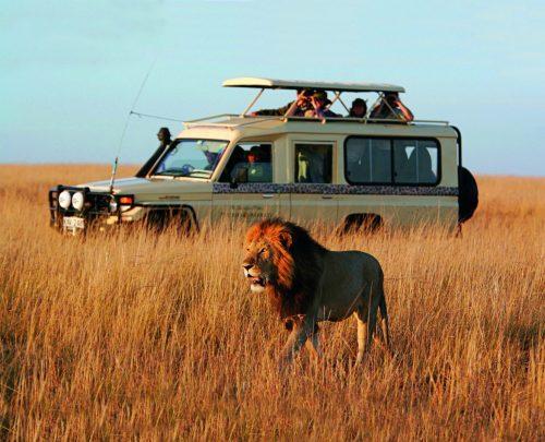 پارک های ملیآفریقای جنوبی