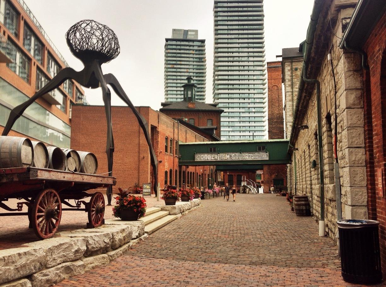گردش رایگان در تورنتو