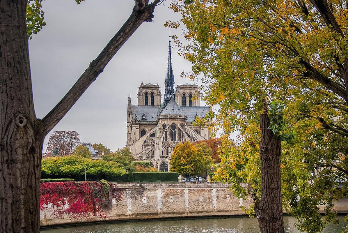 جزیره و پل سنت لویی پاریس
