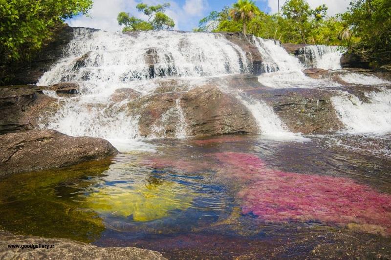 رودخانه کانیو کریستالس کلمبیا