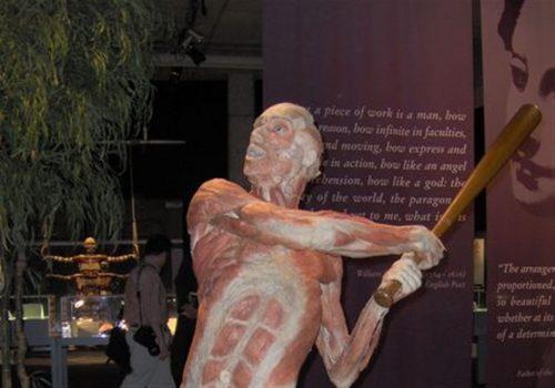 موزه اجساد برلین