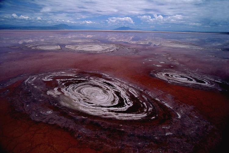 دریاچه ناترون تانزانیا