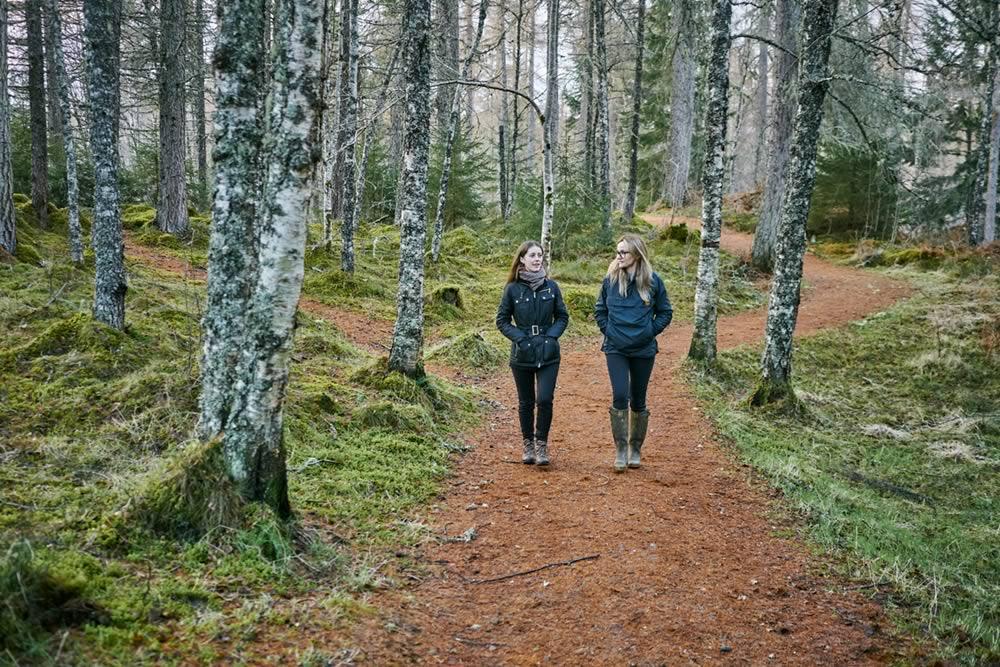 پارک جنگلی ملکه الیزابت اسکاتلند