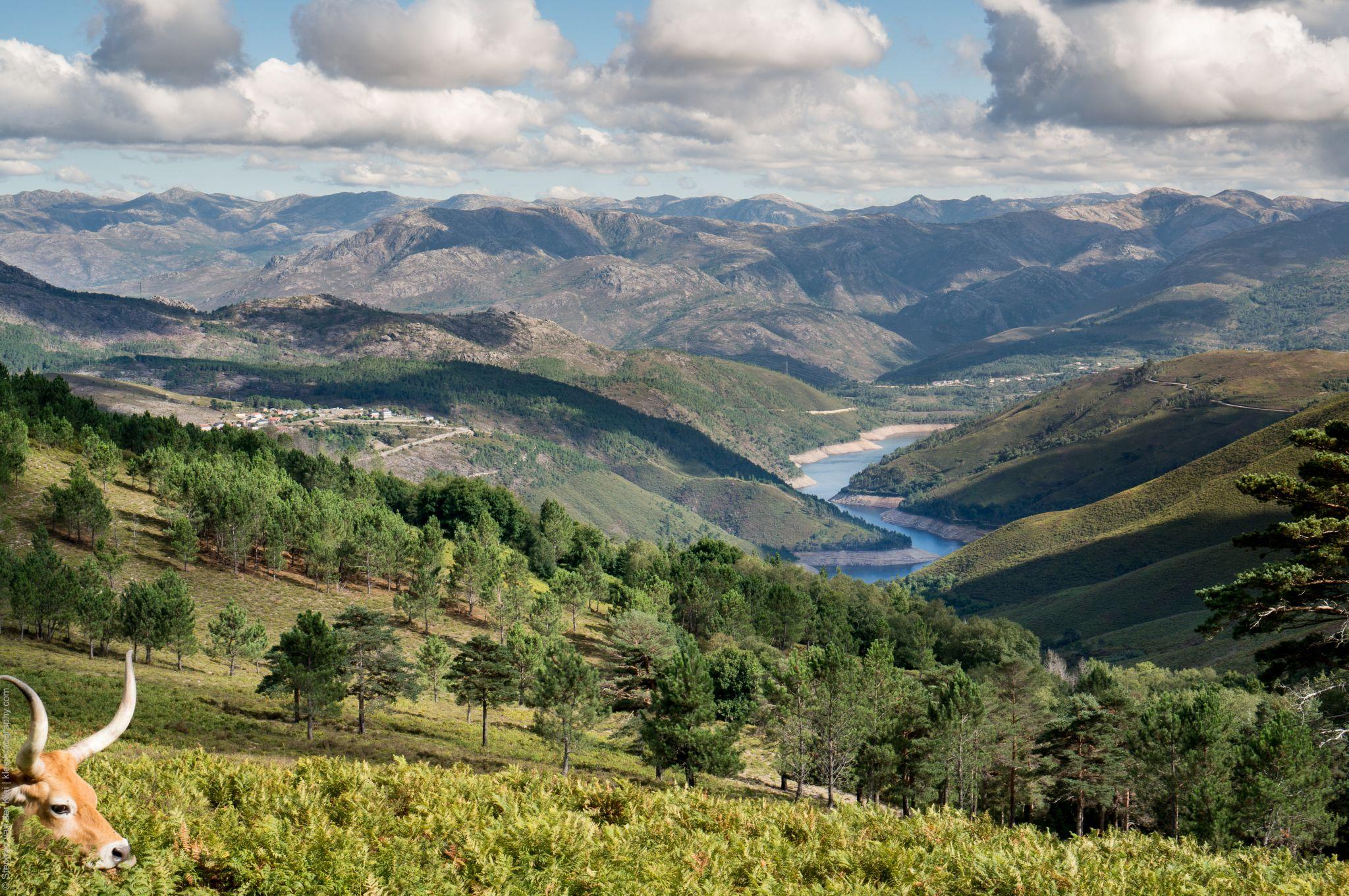 پارک ملی پندا گرس، پرتغال