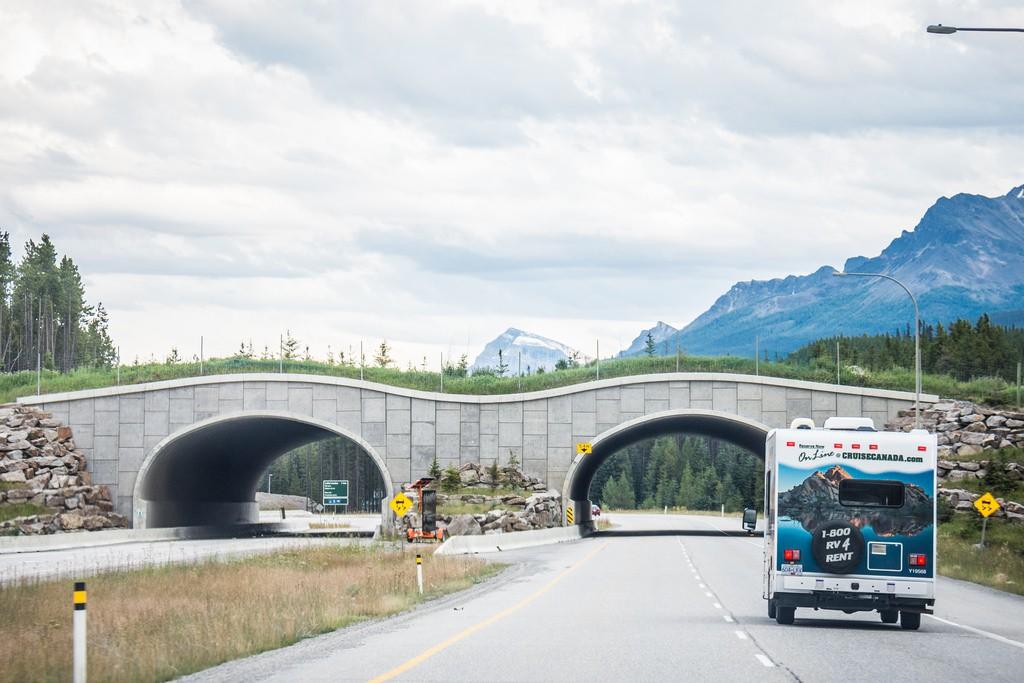 نکات ضروری و مهم در سفر به کانادا