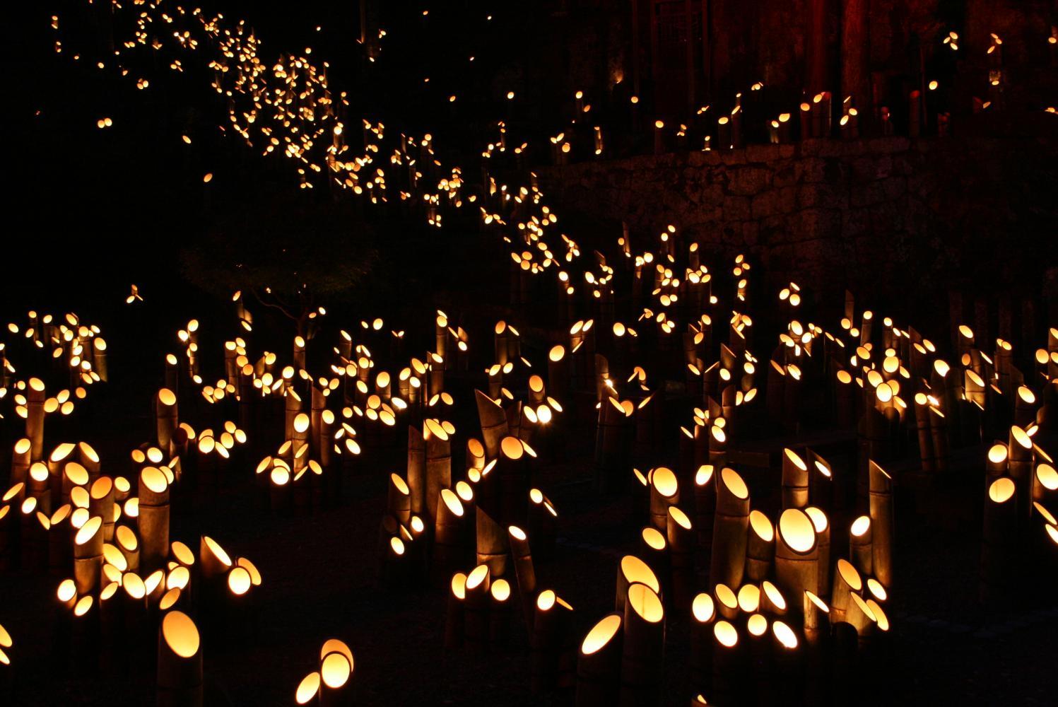 فستیوال نور بامبو ژاپن