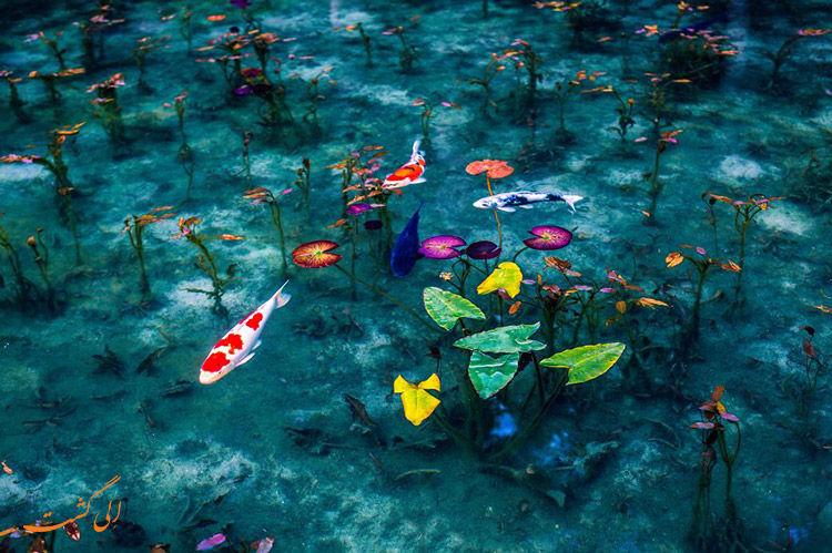 دریاچه مونت ژاپن