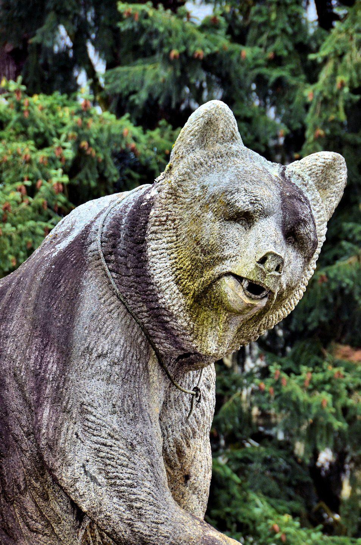 داستان خرس ، نماد شهر برن