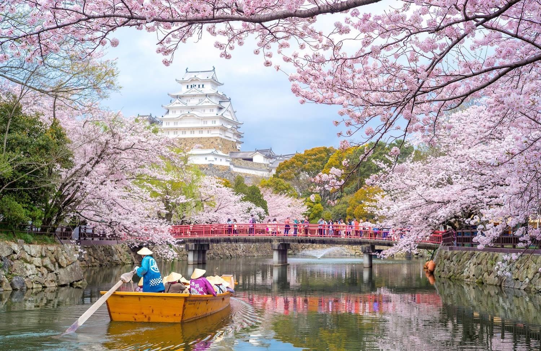 بزرگ ترین قلعه ژاپن