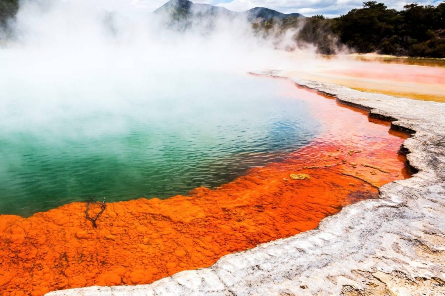 پدیده طبیعی نیوزلند