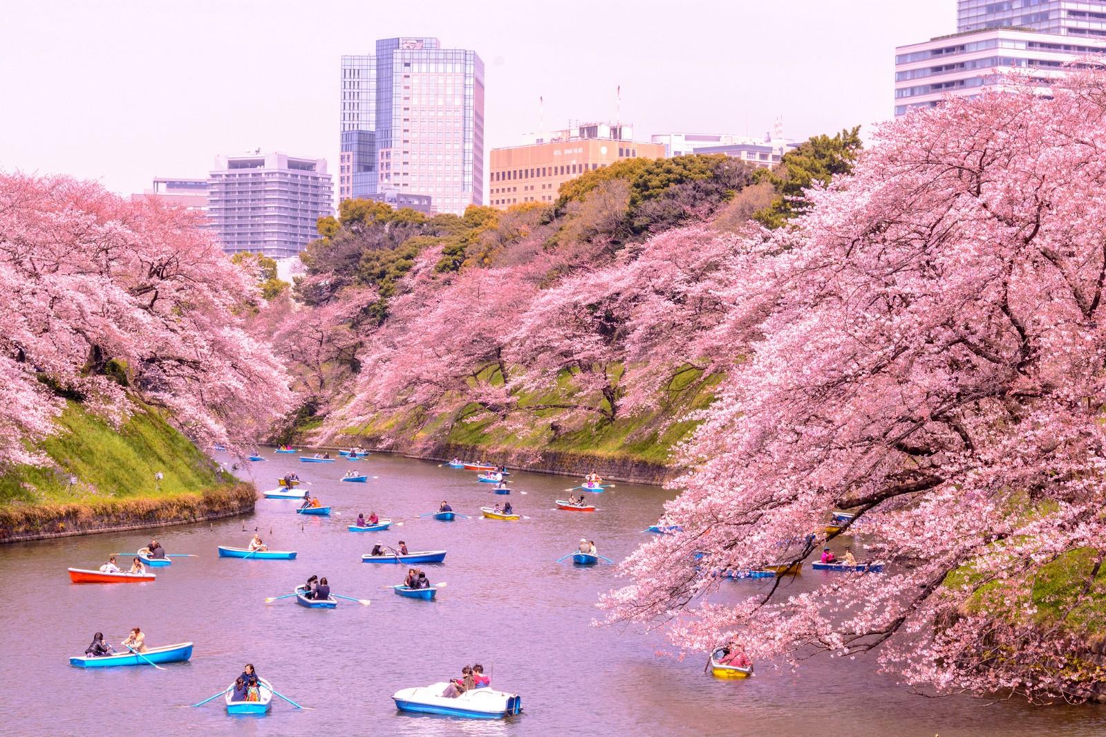 حقایقی درباره کشور ژاپن