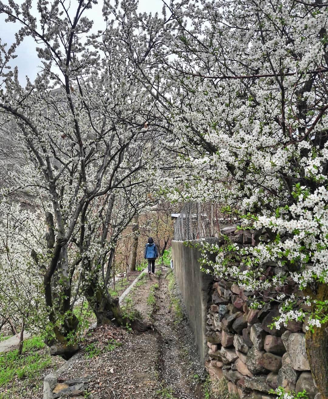 روستا زیبا و دیدنی آهار تهران