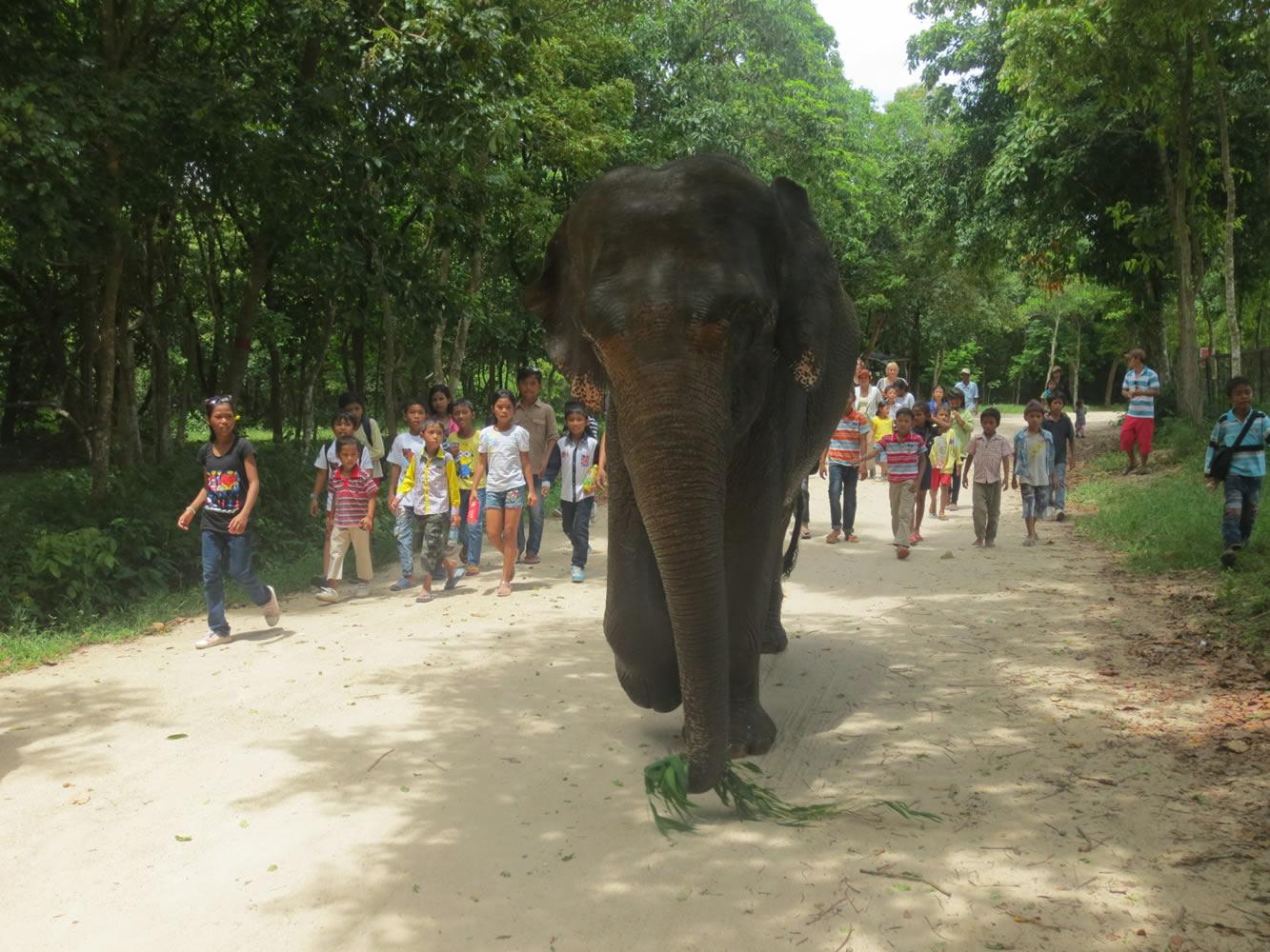 باغ وحش پنوماتیک تانائو