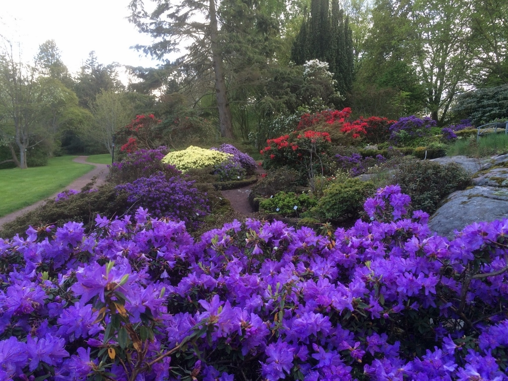 باغ گیاهشناسی گوتنبرگ در سوئد