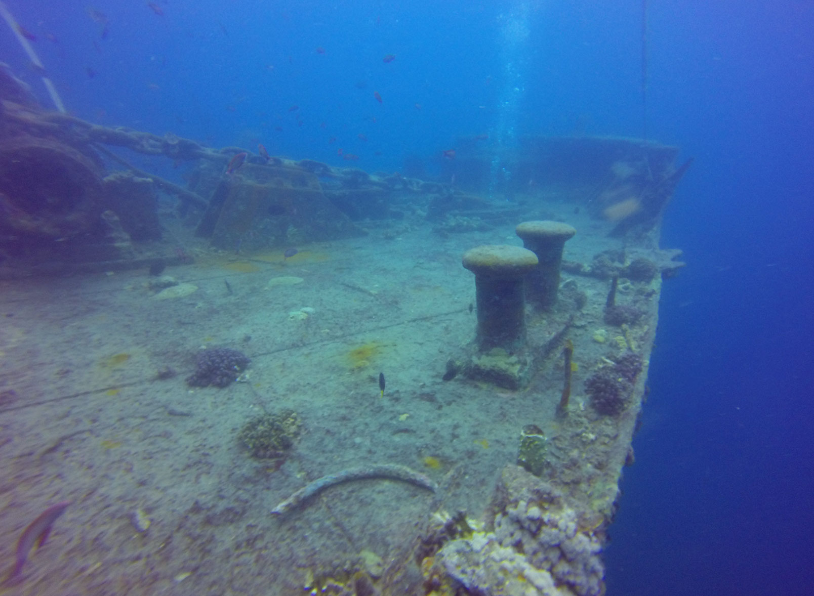 سایت غواصی کشتی تیست لگرم