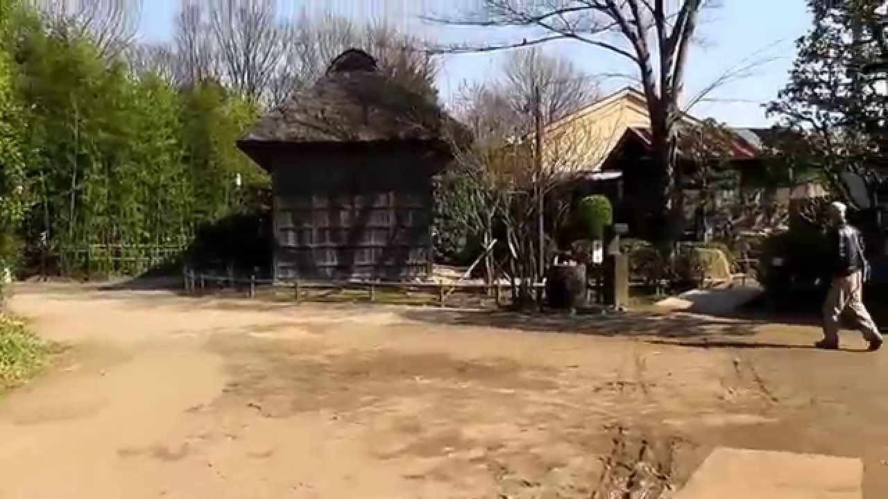 جاذبههای محلی توکیو