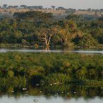 پارک ملی مورچیسون فالز