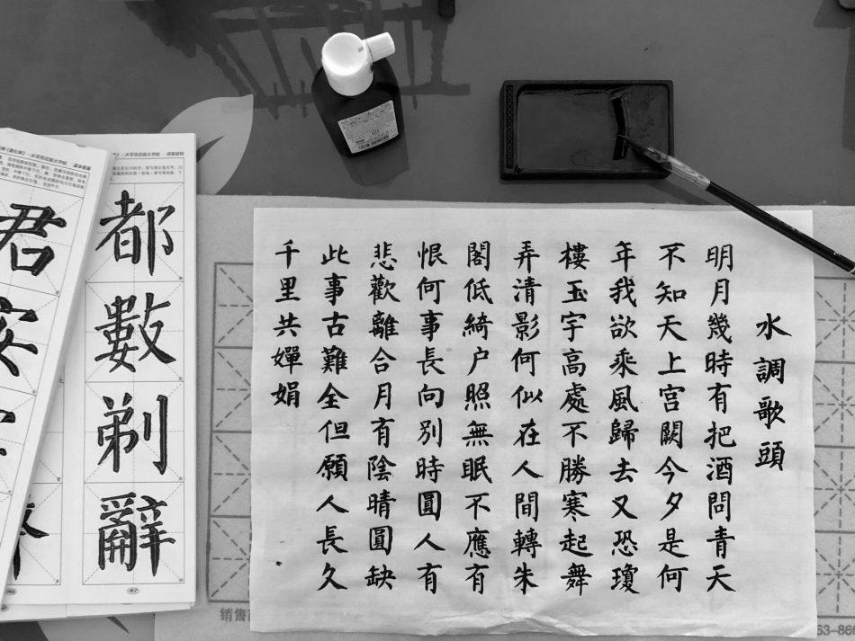 زبان چینی