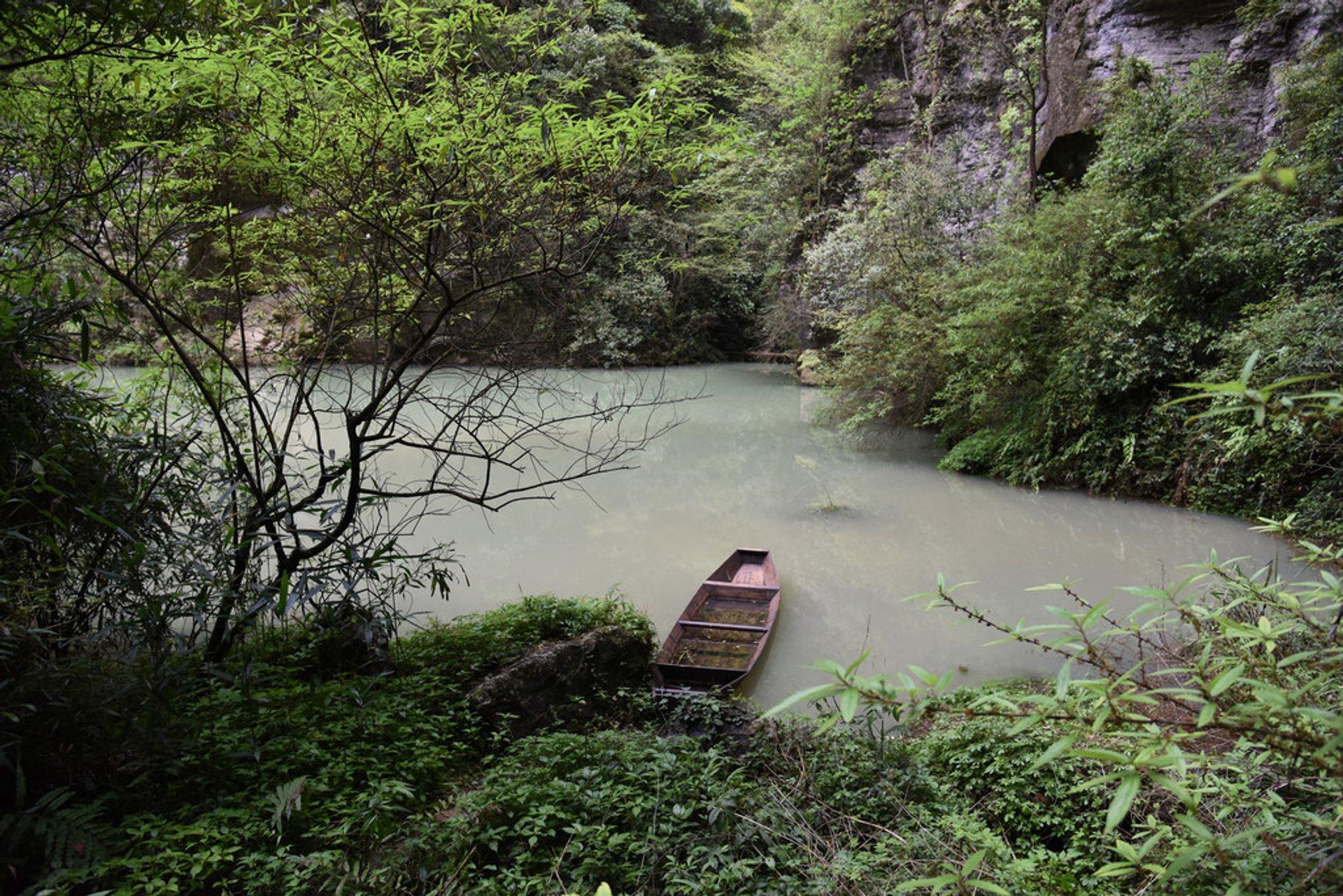 پارک ملی جنگلی ژانگجیاجی