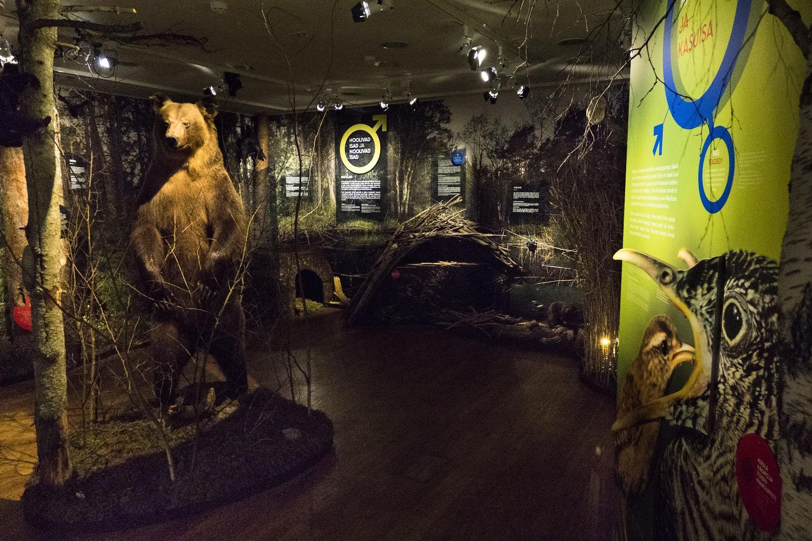 موزه تاریخ طبیعی استونی