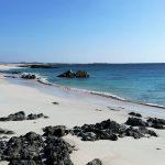 جزیره ماسیرا عمان
