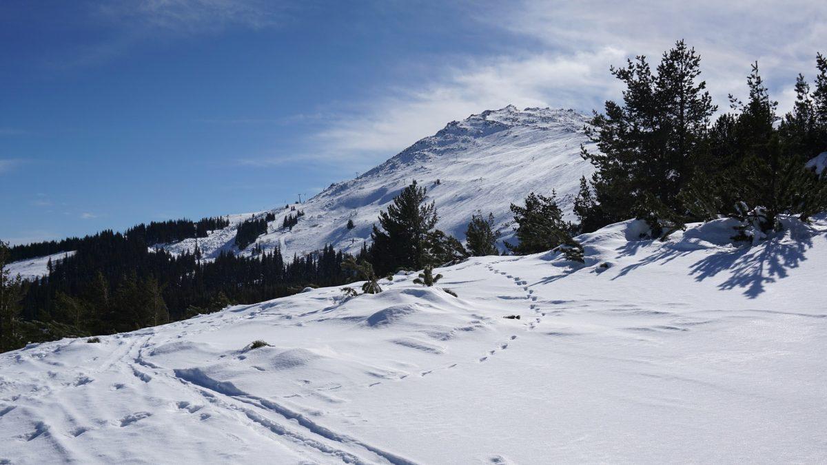 کوه ویتوشا صوفیه