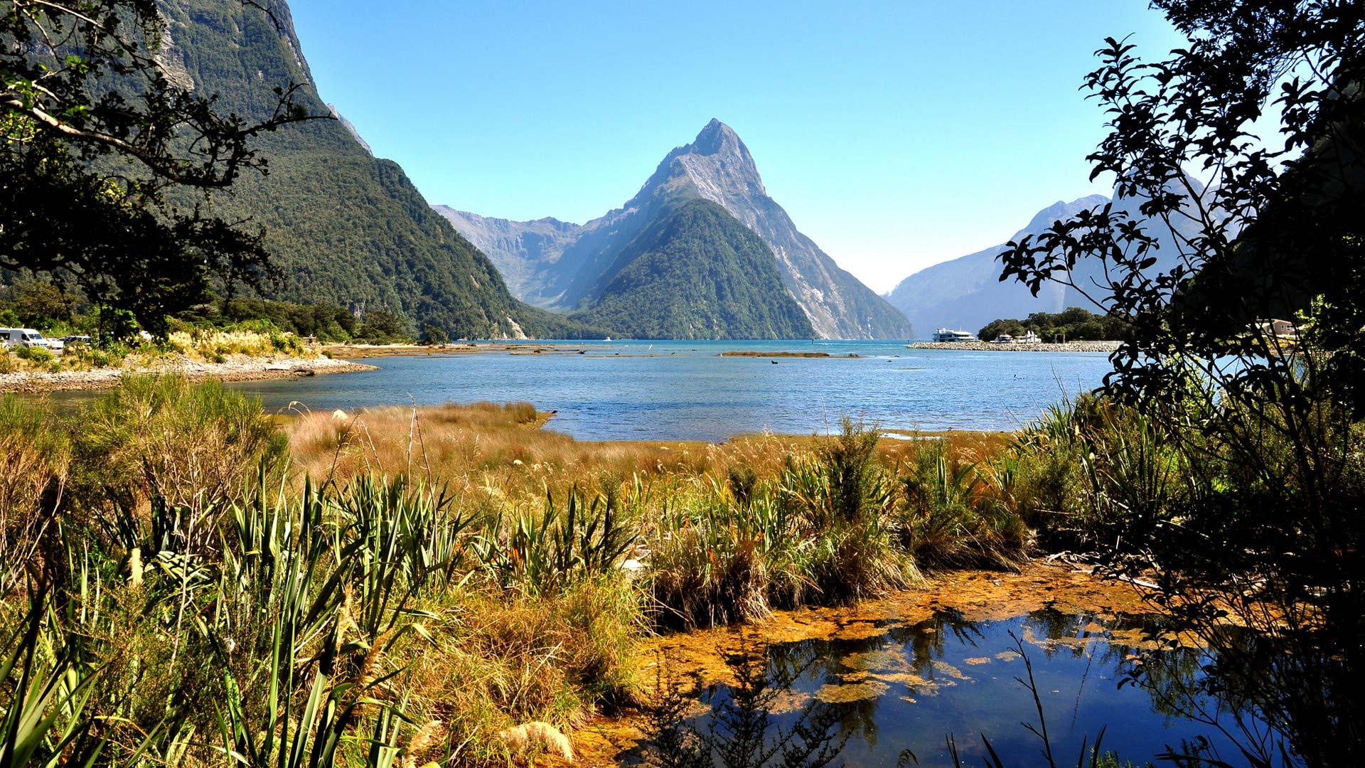 پارک ملی فیوردلند نیوزلند