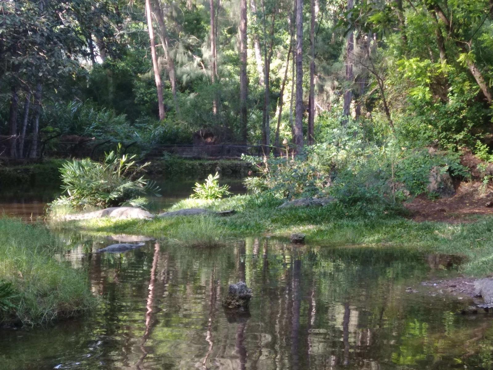 پارک هالر در مومباسا