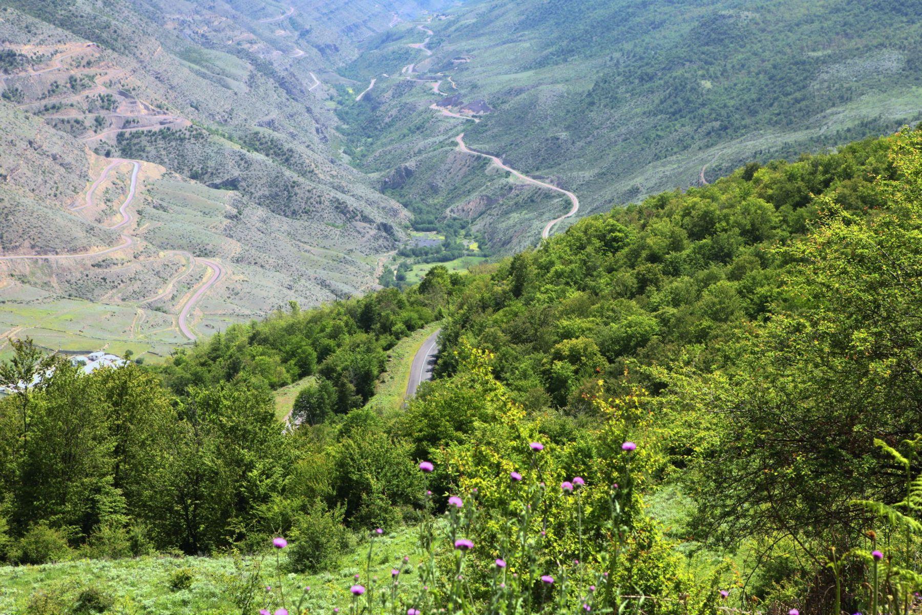 روستا بِرِنت سواد کوه