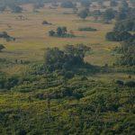 پارک ملی کاسانکا در زامبیا