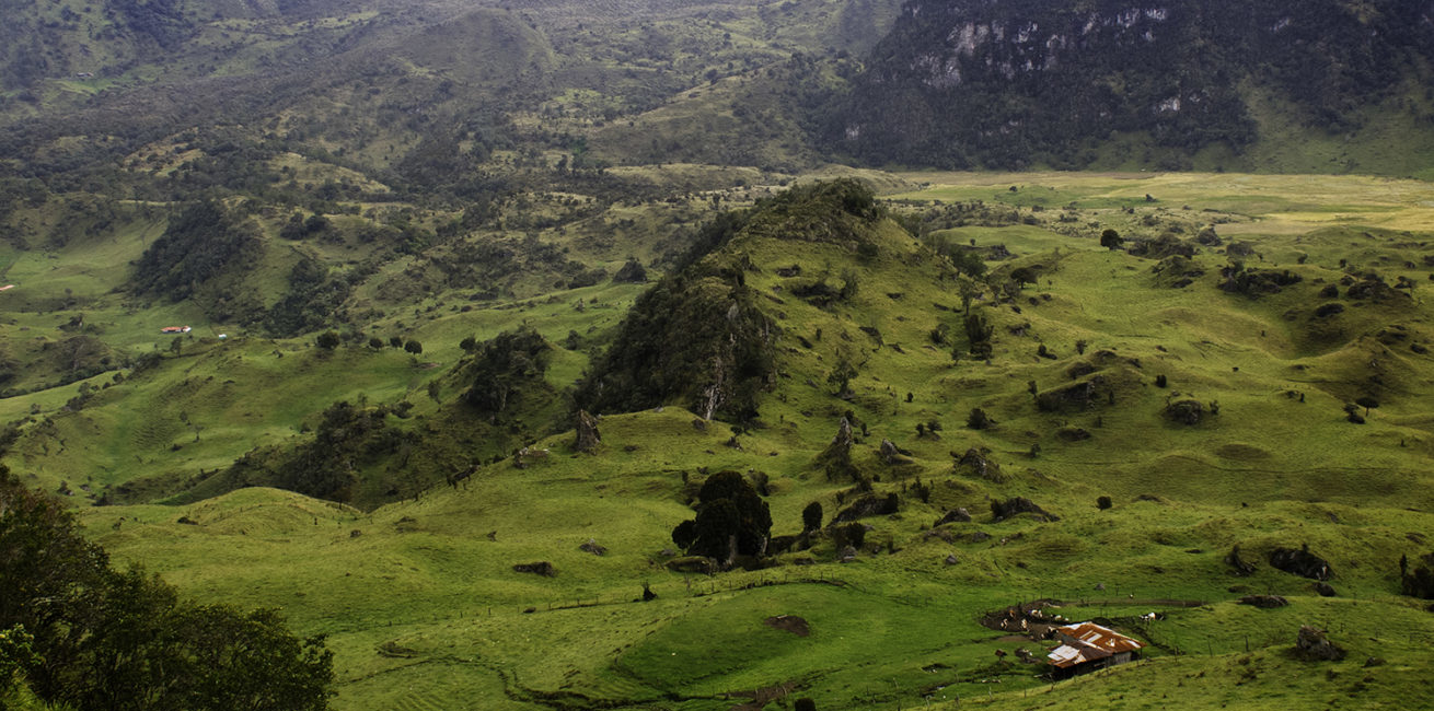 پارک ملی لوس نوادوس