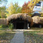 موزه ملی روستای دیمیتری گوستی بخارست
