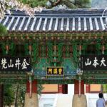 busan-temple